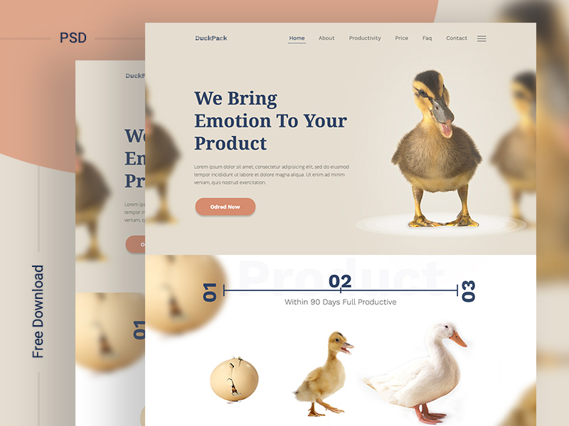 DuckPack-Landing-Page-ll-Free-Download-Thumb